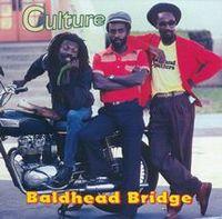 CultureBaldheadBridge