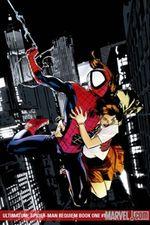 Ultimatum spider man requiem 1