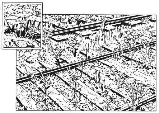 DIFFERENT_UGLINESS_DIFFERENT_MADNESS_PANEL_3