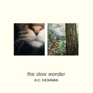 The_Slow_Wonder-A.C._Newman_480