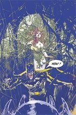 Batman-widening-gyre-1