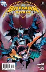 6833163-batman-and-robin-16