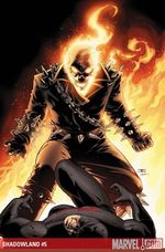 Shadowland_5_cover