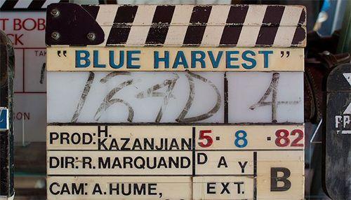 26616220-c587-11e3-a75f-6f009d30e74b_blue-harvest