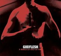 Godflesh_-_A_World_Lit_Only_by_Fire